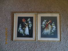 Glenn F Bastian 2 Signed Pictures: Birds of Paradise & Central American Bird #Americana