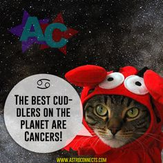 cancers are the best cuddlers!