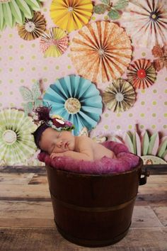 newborn photography by sugar plum photos