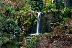 Monte Aloia National Park, Spain