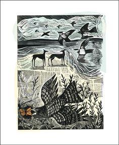 Nightjar and Sea by Angela Harding