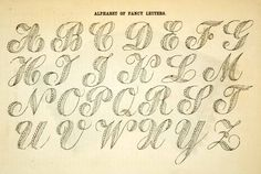 1862 black and white in-text wood engraving of an alphabet of fancy letters used for embroidery and other fine handwork.