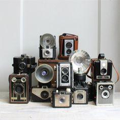 ♥vintage cameras♥