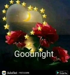 Good Night sister and all,have a peaceful sleep,God bless,xxx❤❤❤✨✨✨🌙😊☺😘 Good Night For Him, Good Night Thoughts, Good Night Sister, Good Night Messages, Good Night Sweet Dreams, Good Night Quotes, Good Morning Good Night, Good Night Love Images, Beautiful Love Pictures