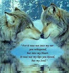 wolf soul....