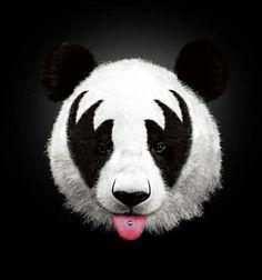 Kiss of a panda Art Print by Robert Farkas - Edit by IC Motivational Wall Art, Inspirational Wall Art, Le Dab, Panda Face, Rock Poster, Paper Wall Art, Creative Photography, Cool Stuff, Funny Stuff