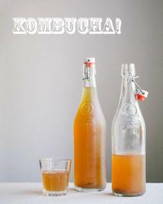Homemade Kombucha | A Couple Cooks
