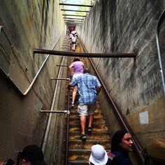 Diamond Head vandringsleden, ganska mycket trappor vad det verkar... Hawaii Travel, Stairways, Instagram Posts, Stairs, Staircases, Ladders