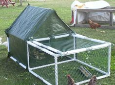 easy build chicken coop . cheap, easy to build chicken coop ... | PVC pipe crafts/projects.  Good for a temp run so they can explore the yard safely.