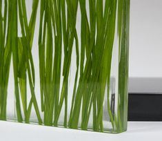 Specialty laminated glass Glass Etching, Glass Vase, Acid Etched Glass, Laminated Glass, Glass Railing, Shower Screen, Japanese Paper, Metal Mesh, Natural Materials