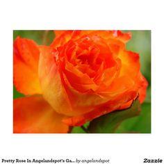 Pretty Rose In Angelandspot's Garden Postcard