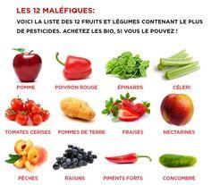 12 Fruits et légumes à consommer BIO