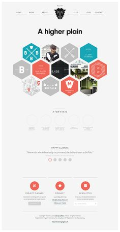 Buffalo design studio - unusual grid shape, use of testimonials and even statistics about how their designs improved revenue for clients