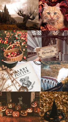 Harry Potter Artwork, Harry Potter Wallpaper, Cute Fall Wallpaper, Autumn Phone Wallpaper, Fantastic Beasts Book, Harry Potter Halloween, Fall Background, Harry Potter Aesthetic, Autumn Cozy