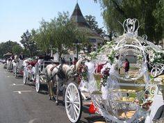 Party idea - I want to ride in a carriage.