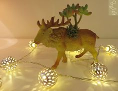 Reindeer // M Friends Series, Dinosaurs, Reindeer, Succulents, Play, Cool Stuff, Green, Animals, Color