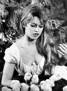 Brigitte Bardot and chickens, 1950s.
