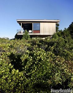 """Surrounded by Shrubbery: """"The idea is to let the house look like it was simply dropped in the dunes,"""" Tamarkin says."""