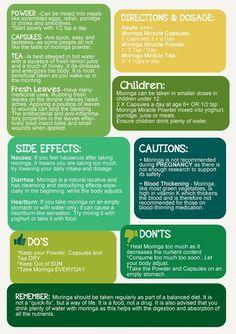 Helpful Tips on Moringa