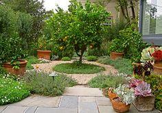 English Garden | Garden Architecture - Landscape Design & Construction - Berkeley, CA