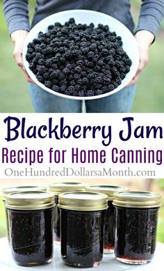 Canning How To Make Blackberry Jam One Hundred - But We Still Had A Huge Bowl Of Blackberries Left Over So I Popped Them In The Freezer Last Night And Made A Batch Of Blackberry Jam This Morning After Breakfast Blackberry Jam Is One Of Those Funky Canning 101, Home Canning, Canning Recipes, Blackberry Jam Recipes, Homemade Blackberry Jam, Seedless Blackberry Jam, Blackberry Jelly Recipe With Sure Jell, Black Raspberry Jam Recipe, Blackberry Jam No Pectin
