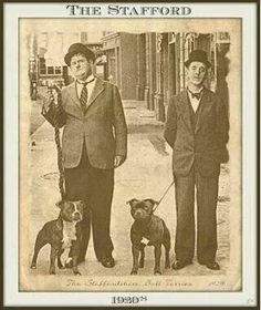 Laural and Hardy 1930 loved Bullies.
