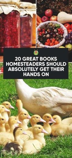 20 Great Books Homesteaders Should Absolutely Get Their Hands On