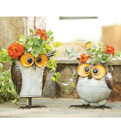 Iron-Crafted Owl Planters