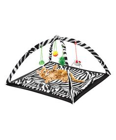 Another great find on #zulily! Zebra Print Kitty Activity Center #zulilyfinds