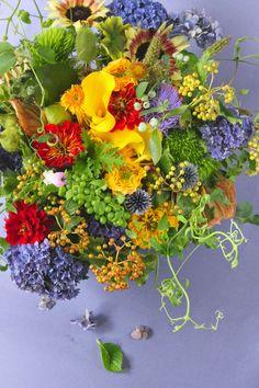 Staff blog: 7月の花たち