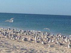 Calm - I love that beach days that are this calm.