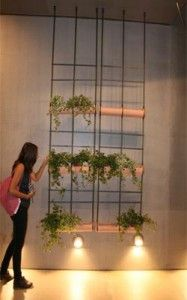 Creative Dividers Using Hanging Planters Image 286 Growing Greens, Kinds Of Shapes, Room With Plants, Small Places, Plant Wall, Other Rooms, Hanging Planters, Window Coverings, Interior Design