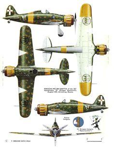 Macchi MC 200 Saetta - Regia Aeronautica, 362a Squadriglia, 22° Gruppo Autonomo, agosto 1941, Krivoirog, Russia 1942