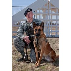 Tillman, a military working dog, sits with U. David Smith, Security Forces Squadron military working dog handler, during an obedience training course March Military Working Dogs, Military Dogs, Police Dogs, War Dogs, Belgian Malinois, German Shepherd Dogs, Belgian Shepherd, German Shepherds, Service Dogs