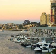 Fridays are best served with a side of Sydney Harbour sunset!  #studiomatrix #sunset #sydney #sunsetlovers #sydneyharbourbridge #harbour #pretty #pastels #fridaydrinks #friyay #friday #weekend #tgif #digitalmarketing #seo #sem #team #digital #social #socialmedia #webdesign #design by studio.matrix http://ift.tt/1NRMbNv