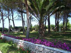 Se encuentra en la campiña de Menorca, a 10 minutos en coche de la playa de Cala Galdana, y está rodeado de amplios jardines con piscina y pista de tenis. Decoración  rústica y ofrece habitaciones, apartamentos y villas con baño privado, conexión Wi-Fi gratuita y vistas al jardín. Entrada privada y cocina equipada. Cuenta con bar cafetería junto a la piscina que sirve comidas y bebidas. También Salón-terraza que da al césped de la piscina. El desayuno casero se puede tomar en los jardines.