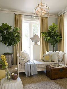 gray and marigold yellos. love the trunk detail as coffee table. trees add height and life to room