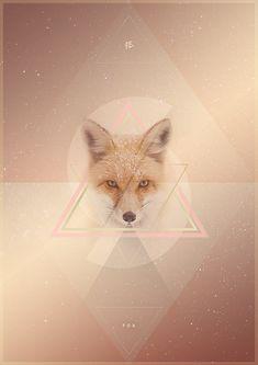 Golden Fox Poster on Behance