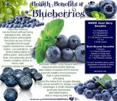 Studies have suggested that blueberries could reduce the damaging effects of age related disorders like Alzheimers disease