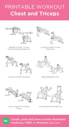 Best workout plans which are really straight-forward for novices, both men and f. - Best workout plans which are really straight-forward for novices, both men and female to action. Tricep Workout Women, Chest And Tricep Workout, Chest Workout Women, Gym Workout Plan For Women, Gym Workouts For Men, Best Workout Plan, Triceps Workout, Chest Workouts, Fun Workouts
