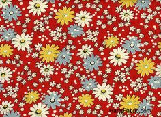 American Jane Daisies Red