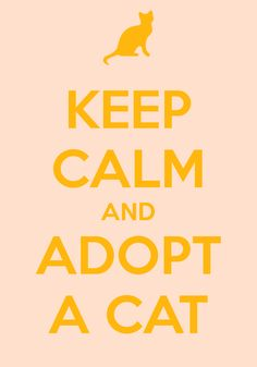 "... and that's how crazy cat ladies are made. ""Keep Calm and Adopt a Cat"""