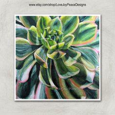 Succulent Colored Pencil Painting, photo Realism, nature painting, art print