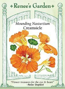 Nasturtium  Creamsicle Seeds >>> Details can be found by clicking on the image.