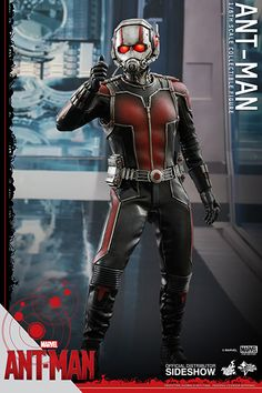 Marvel Ant-Man Sixth Scale Figure by Hot Toys Marvel Dc Comics, Marvel Heroes, Marvel Avengers, Marvel Art, Ant Man Suit, Ant Man Scott Lang, Captain America Civil War, Marvel Cinematic Universe, Action Figures