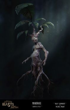 Fake-Tastic Beasts and Where to Find Them!-Journal Entry 02-Mandrake, Michael Mowat on ArtStation at https://www.artstation.com/artwork/Xxgzy
