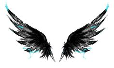 Cool bird wings
