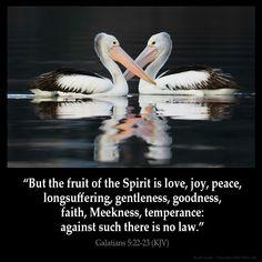 pictures of kjv bible verses | Galatians 5:22 Inspirational Image