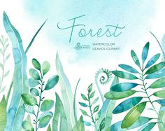 Forest watercolor leaves. 18 handpainted clipart, foliage, grass, leaf, wedding invitation, separate elements, greeting, diy, herbal, mint