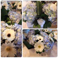 Blue hydrangeas with mini gerbera daisies and lisianthus.